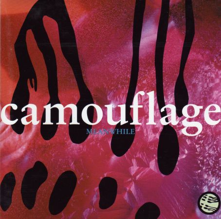 camouflage_cover_89_167